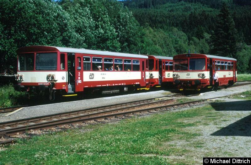 Bild: 810 510 und ein Beiwagen in Kubova Hut.