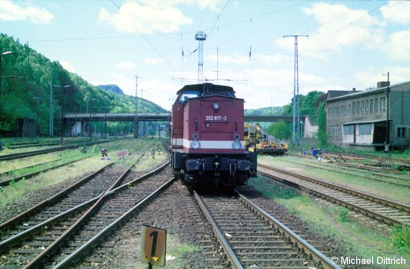 Bild: 202 817 bei der Einfahrt in Bad Schandau