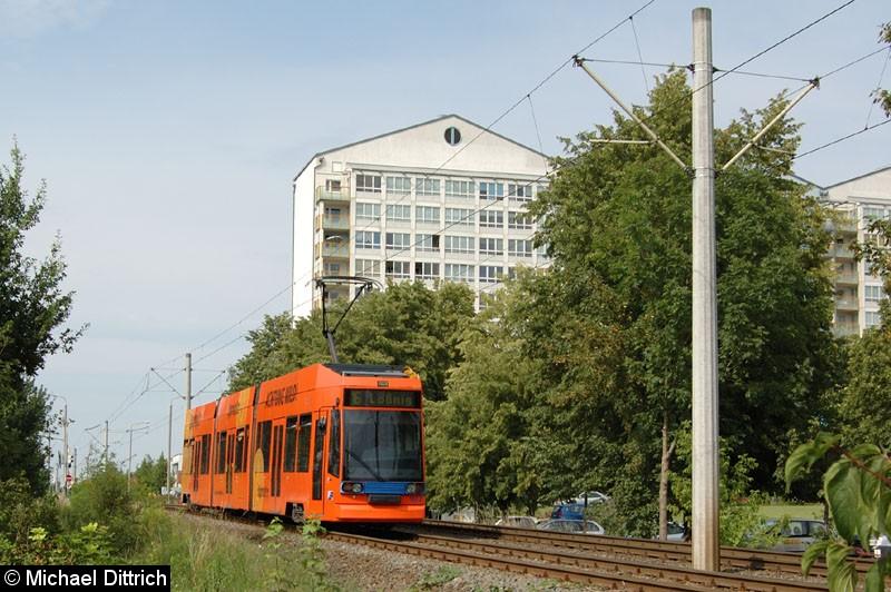 Bild: 1102 auf dem Weg nach Lößnig zwischen Moritz-Hof und Lößnig.