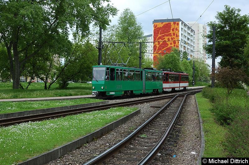 Bild: KT4D 518 und 405 als Linie 5 bei der Ankunft am Zoopark.