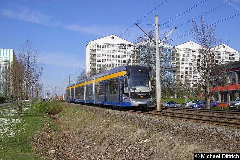 Bild: 1220 auf dem Weg nach Lößnig zwischen Moritz-Hof und Lößnig.