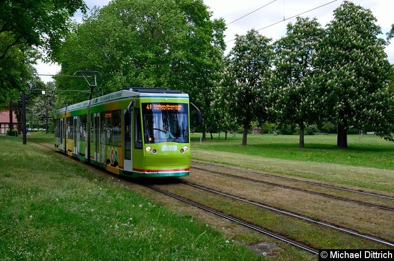 Bild: 1374 als Linie 41 kurz hinter der Haltestelle Herrenkrug.