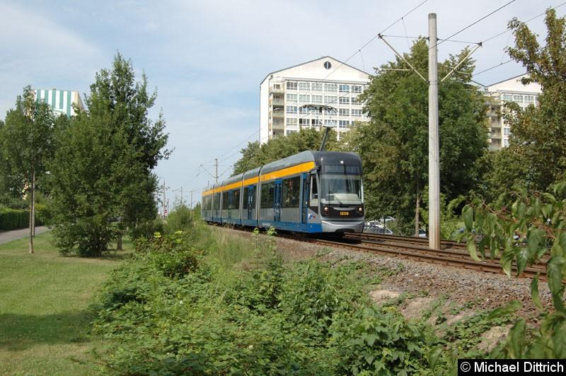 Bild: 1206 auf dem Weg nach Lößnig zwischen Moritz-Hof und Lößnig.