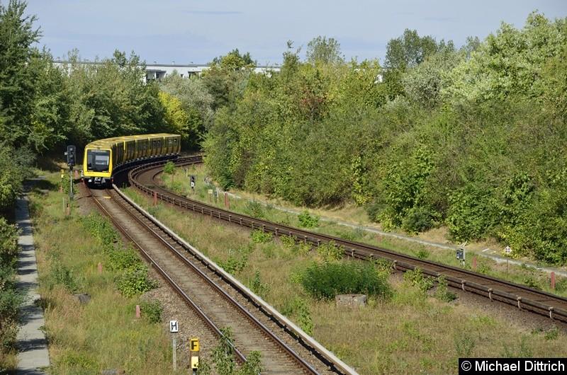 Bild: 1035 + 1034 zwischen den Bahnhöfen Cottbusser Platz und Kienberg.