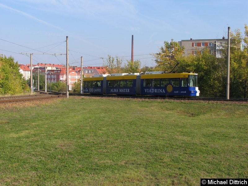 Bild: 306 hat zwei Werbungen auf einer Bahn.