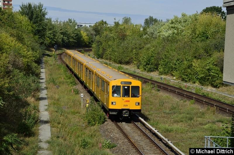 Bild: 2529 erreicht, mit zwei weiteren F-Zügen, gleich den Bahnhof Kienberg.