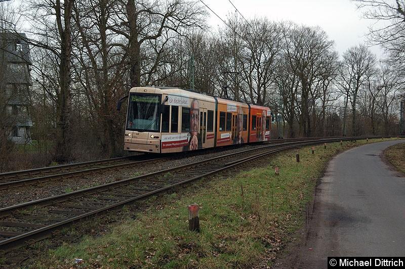 Bild: 228 als Linie 19 zwischen den Haltestellen Waldau und Waldfriedhof Goldstein.
